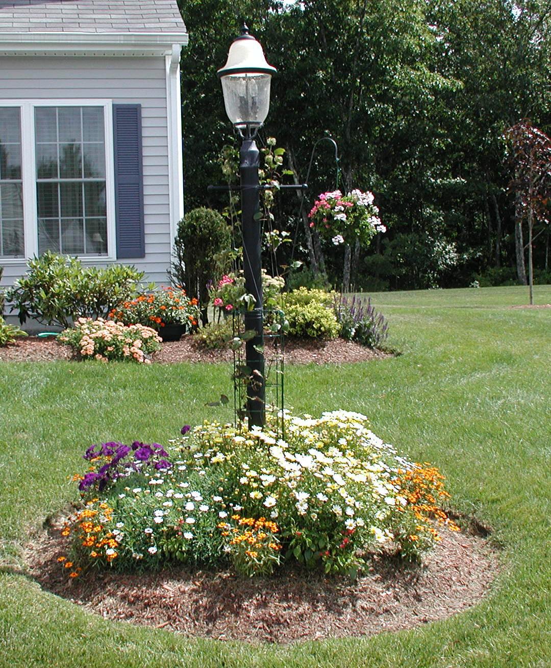 Lamppost Planting